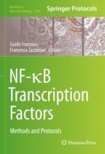 NF-κB Transcription Factors: Methods and Protocols [electronic resource]