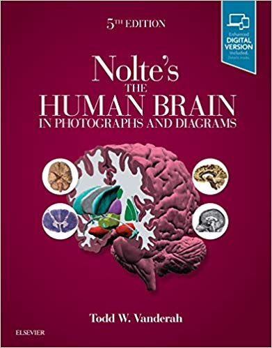 Nolte's the human brain in photographs and diagrams [electronic resource]