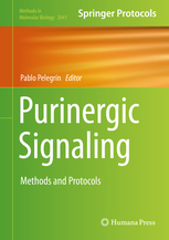 Purinergic signaling: methods and protocols [electronic resource]
