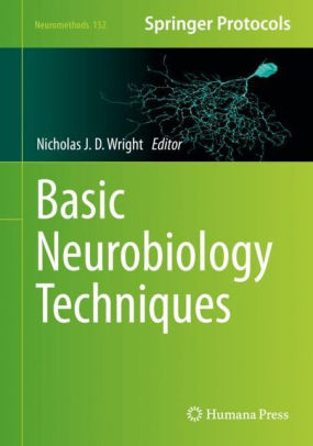 Basic neurobiology techniques [electronic resource]