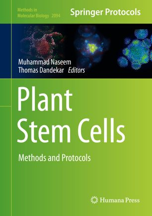 Plant Stem Cells : Methods and Protocols [electronic resource]