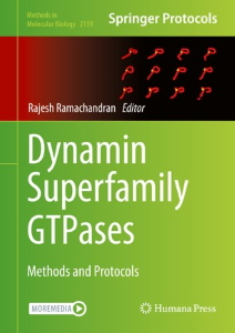 Dynamin Superfamily GTPases : Methods and Protocols [electronic resource]