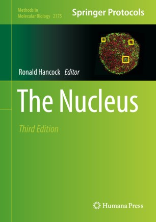 The Nucleus [electronic resource]