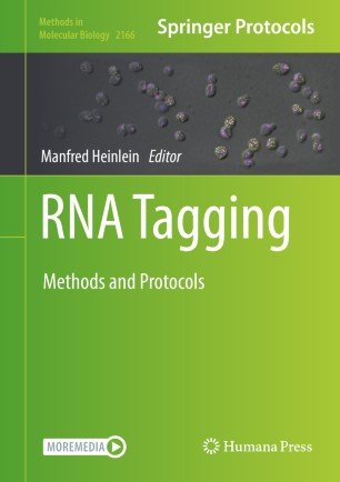 RNA Tagging : Methods and Protocols [electronic resource]