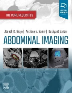 Abdominal imaging: the core requisites [electronic resource]