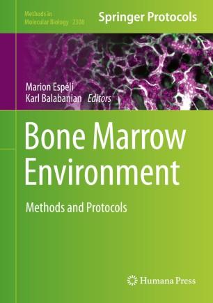 Bone Marrow Environment: Methods and Protocols [electronic resource]