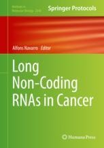 Long Non-Coding RNAs in Cancer [electronic resource]