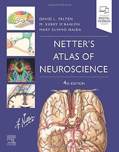 Netter's atlas of neuroscience [electronic resource]