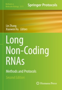 Long Non-Coding RNAs : Methods and Protocols [electronic resource]