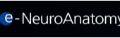 e-NeuroAnatomy