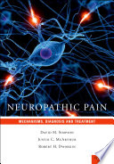 Neuropathic Pain : Mechanisms, Diagnosis and Treatment [electronic resource]