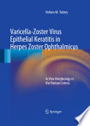 Varicella-Zoster Virus Epithelial Keratitis in Herpes Zoster Ophthalmicus In Vivo Morphology in the Human Cornea /  [electronic resource]