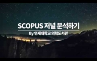 SCOPUS 저널분석